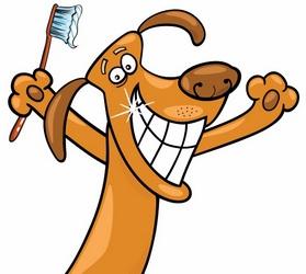Καθαρισμος δοντιων σκυλου