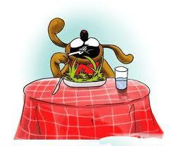 διατροφη σκυλου