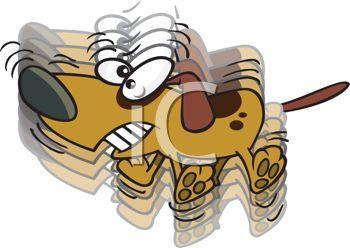 τρεμουλο σκυλου