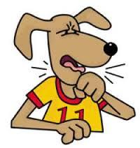 Ασθένεια σκύλου Kennel Cough - τραχειοβρογχιτιδα
