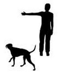 εκπαιδευση σκυλου εντολη ok