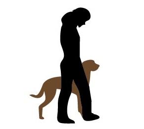 """Εκπαιδευση σκυλων - εντολη """"Παμε"""" - """"Heel"""""""