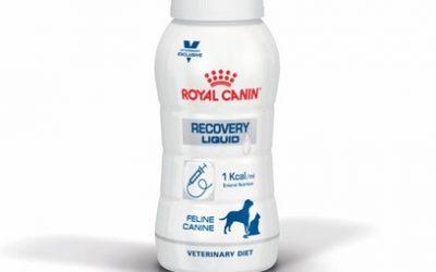 RCV2 ROYAL CANIN RECOVERY LIQUID ΓΑΤΑΣ ΥΓΡΗ ΤΡΟΦΗ ΣΚΥΛΟΥ ΓΙΑ ΑΝΑΡΡΩΣΗ