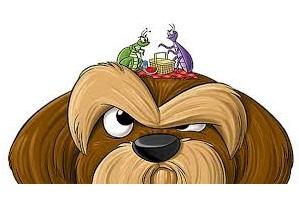 Αποπαρασιτισμοι από παρασιτα σκυλου