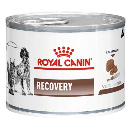 Υγρή γατας τροφη κονσερβα κλινικη διαιτα σκυλων για αναρρωση - αποκατάσταση Royal Canin Recovery